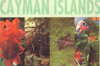Picture of Cayman from 1992 telephone book prior to recycling