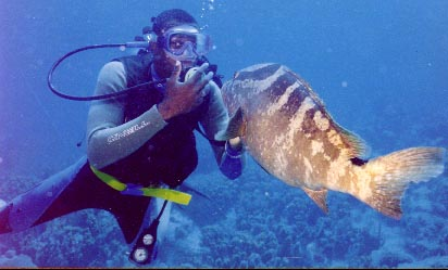 Diver with a grouper