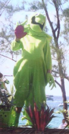 Iguana Ted